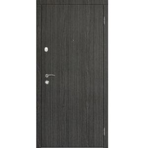 Дверь металлическая модель «S-5»