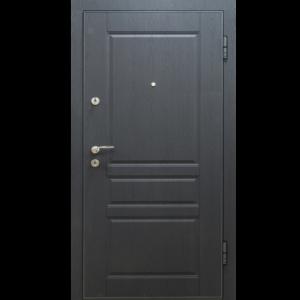 Дверь из оцинкованной стали «O3-02 2»