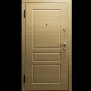 Дверь из оцинкованной стали «O3-02»